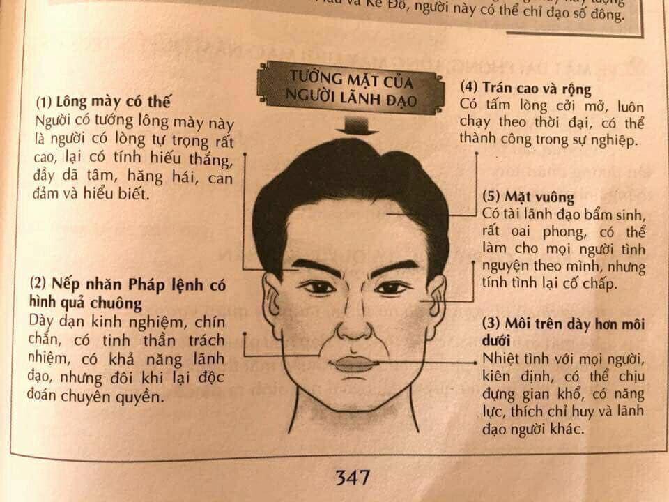 8 khuôn mặt thường gặp nói lên tính cách - nhân tướng học nhân sự